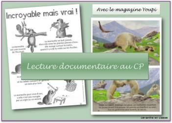lect doc cp présentation