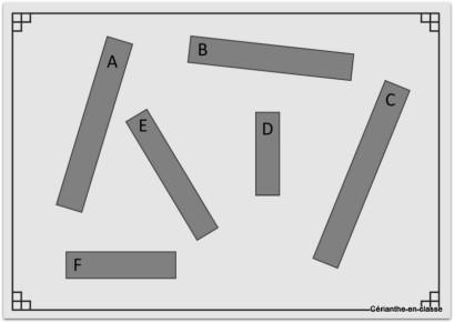 comparer des longueurs avec un étalon