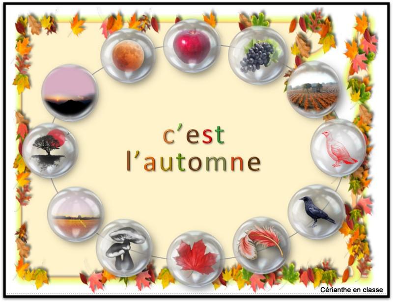 collier automne. 2