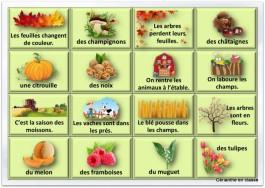 jeu de l'automne végétaux