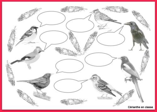 illustration dit des oiseaux