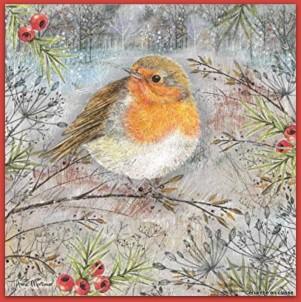 poèmes oiseaux idées d'illustration 2