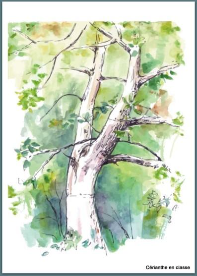 poèmes printemps idées d'illustration 3